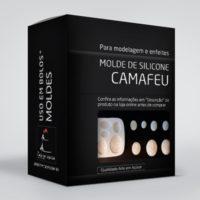 arte em acucar molde silicone camafeu ac17 box single